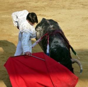 Derechazo del novillero Juan Miguel al burraco 'Desertor', de Ganadería de Pincha, mejor utrero de  los lidiados en la pasada Feria de Peralta.