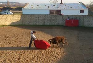 Serranito torea con la diestra a la tercera erala del tentadero, la mejor de las cuatro.