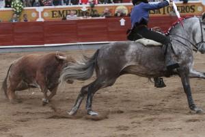 Hermoso, con Manizales, parando al toro en la plaza de Jalostotitlán.