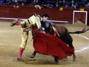 Jiménez Fortes, que torea hoy en Fitero, estuvo a punto de sufrir ayer un serio percance en la plaza de Valencia. Fotografía: Arjona.