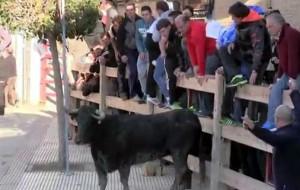 Una suelta de vacas de Íñiguez en Arguedas el año pasado.