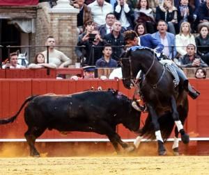 Armendáriz toreando de costado, con mucho temple y ajuste, con 'Prometido', caballo que destacó ayer en Sevilla. Fotografía: Arjona.