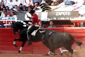 Hermoso toreando en la México con 'Gento', uno de los seis caballos que ha hecho debutar en México.
