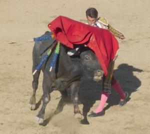 Pase de pecho de Francisco Marco a un toro de Miura el año pasado en la plaza de Estella.