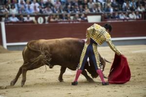 Derechazo de Juan del Álamo al tercero, el único toro de Pedraza de Yeltes que ofreció buen juego. Fotografía: Javier Arroyo.