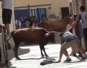 Una suelta de vacas en Huarte.