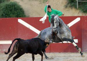 Guillermo Hermoso de Mendoza entrenando en Zaraputz, la finca estellesa familiar.