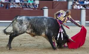 Natural de Javier Castaño a un largo toro de Miura.