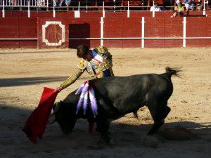 Derechazo de Álvaro Sánchez a un novillos de La Quinta. Fotografía: Virumbrales.