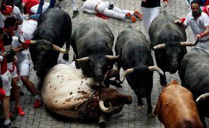 Los toros han galopado agrupados en manada hasta el callejón.