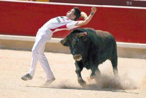 Ajustado recorte de Peta al toro 'Imperioso'. Fotografía: Jesús Garzaron.