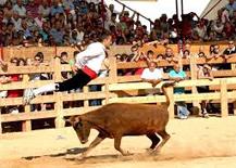 Un concurso de recortes de anteriores ediciones del Día de la Vaca Brava de Larraga.