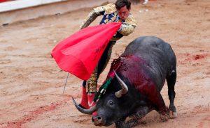 La crisis de fuerza del toro bravo ya afecta también a Miura.