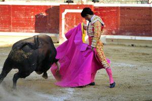 Iván Fandiño recibió con mecidas veróncias a `Sevillano', de Hermanos Garzón, el mejor toro de la feria. Fotografía: Alberto Galdona.