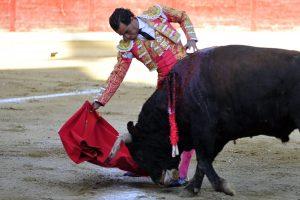 Derechazo de mano baja de Fandiño al cuarto de la tarde, que atesoró calidad en la muleta. Fotografía: Alberto Galdona.