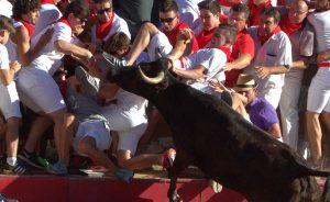La vaca cornea a Javier Castellano Rodríguez tras subir a la pirámide repleta de espectadores. Fotografías: Pejenaute.