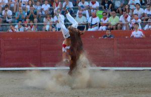 Javier Prádanas en el momento de la cornada que le propinó el novillo Sabanero, de la ganadería Herederos de Ángel Macua, de Larraga. Fotografía: Susana Esparza.