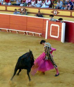 Darío Domínguez. A la verónica ante el segundo