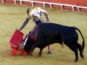 Darío Domínguez. Con la diestra frente al segundo