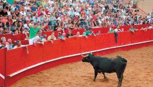 Milagro respondió a la inauguración de su plaza de toros con un lleno en los tendidos. Fotografía: Enrique Pejenaute.