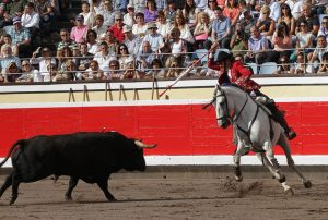 Hermoso ataca con 'Napoleón' al toro para dejar un rejón de castigo en la plaza de Bibao. Fotografía: pablohermoso.net.