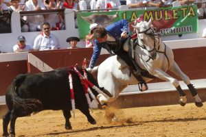 El caballo 'Pirata' volvió a firmar una gran actuación en la plaza francesa de Dax.