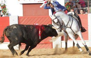 El caballero navarro obtuvo un triunfo redondo en Guijuelo.