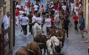 Mucho público en el paso de los novillos por la plaza de Santiago durante el encierrillo de la tarde. Fotografía: Montxo A. G.