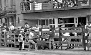 Varias personas ayudaron a desatascar a la vaca brava. Fotografía: U: A.