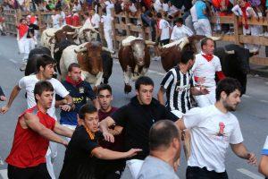 Un momento del encierro en Tafalla de esta mañana, que se ha saldado sin heridos por asta de toro. Fotografía: J. C. Cordovilla.
