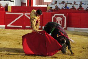 A:ALBERTO GALDONA   F:04-09-2016 L:PERALTA P:TORO 1º T:FIESTAS DE PERALTA - TOROS DIA 4