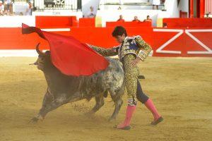 A:ALBERTO GALDONA   F:04-09-2016 L:PERALTA P:TORO 3º T:FIESTAS DE PERALTA - TOROS DIA 4