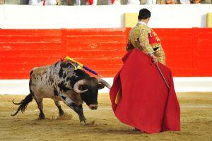 A:ALBERTO GALDONA   F:04-09-2016 L:PERALTA P:TORO 4º T:FIESTAS DE PERALTA - TOROS DIA 4