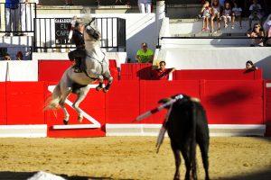 Domínguez, con 'Natural', progagonizó espectaculares saltos para citar al novillo e intentar conetar con los tendidosl Forografía: Alberto Galdona.
