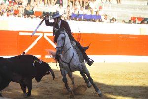 A:ALBERTO GALDONA F:06-09-2016 L:PERALTA P:TORO 2 T:FIESTAS DE PERALTA - CORRIDA DE REJONES