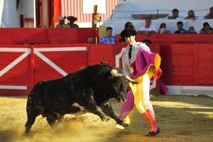 A:ALBERTO GALDONA   F:08-09-2016 L:PERALTA P:TORO 2 T:FIESTAS DE PERALTA  - CORRIDA DIA 8