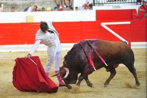 A:ALBERTO GALDONA   F:08-09-2016 L:PERALTA P:TORO 5 T:FIESTAS DE PERALTA  - CORRIDA DIA 8
