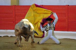 Larga cambiada con que saludó Expósito al que abrió plaza. Fotografía: Alberto Galdona.
