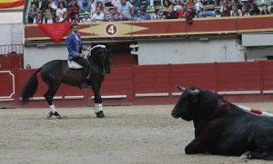 El segundo del caballero navarro careció de fuerza. Fotografía: pablohermoso.net.