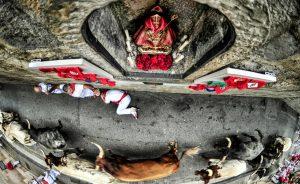 'A vista de santo', la fotografía ganadora.