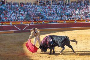 Padilla toreando en la plaza de Tudela el pasado mes de julio ante unos tendidos de sombra llenos.