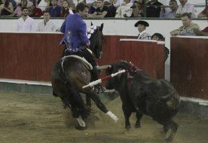 'Disparate' fue el caballo más destacado en Cartagena de Indias.