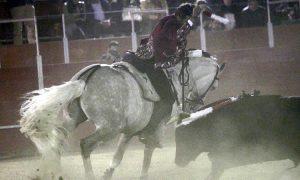 El caballero navarro utilizó a 'D'artagnan' en el último tercio en la portátil de Capulhuac. Fotografía: pablohermoso.net