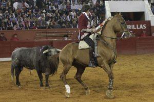 'Dalí', tirando del toro, ayer en la plaza de San Luis Potosí. Fotografía: pablohermoso.net