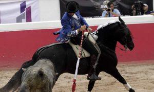 El caballero navarro recibió a su primero en el cortijo Los Azulejos con 'Alquimista'. Fotografía: pablohermoso.net