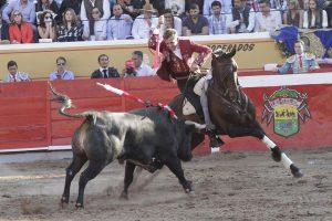 El caballero navarro optó en 'Jalos' por 'Carmona' para los tercios finales. Fotografía: pablohermoso.net