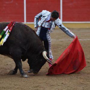 Natural mandón de Urdiales al cuarto de la tarde, el mejor toro del encierro de El Pilar. Fotografía: PH. Latour.