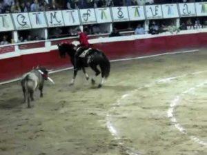 El caballero navarro, intentando torear de costado a su segundo en la plaza de Xico.