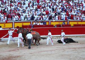 Los mulilleros dando la vuleta al ruedo a 'Desgarbado' el pasado 12 de julio en Pamplona. Fotografía: Enfoque Taurino.