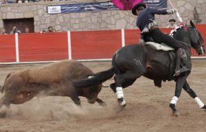 Alquimista. Jerez. 23-IV-2017